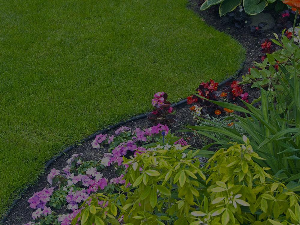 East Brunswick Garden Design